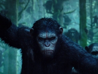 Dawn Of The Planet Of The Apes: Intense (TV Spot)
