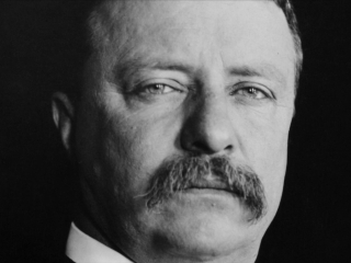 The Roosevelts: An Intimate History: Teddy's Energy
