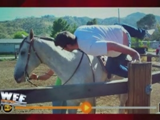 World's Funniest Fails: Horses: They Just Don't Like Us