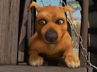 Jock The Hero Dog