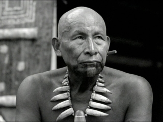 Embrace Of The Serpent (US)